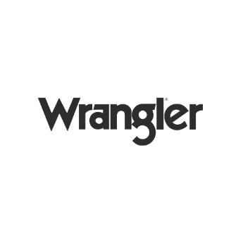 Picture for manufacturer Wrangler